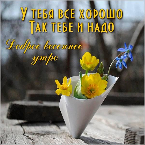 Виртуальная картинка доброе весеннее утро для девушки - скачать бесплатно на otkrytkivsem.ru