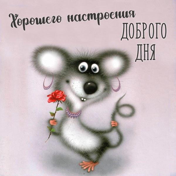Виртуальная картинка доброго дня и хорошего настроения - скачать бесплатно на otkrytkivsem.ru