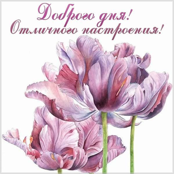 Виртуальная картинка доброго дня и отличного настроения - скачать бесплатно на otkrytkivsem.ru