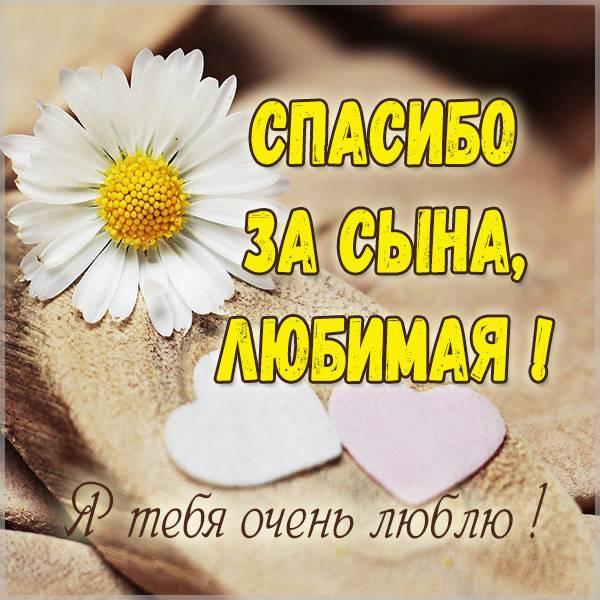 Виртуальная картинка любимая спасибо за сына - скачать бесплатно на otkrytkivsem.ru