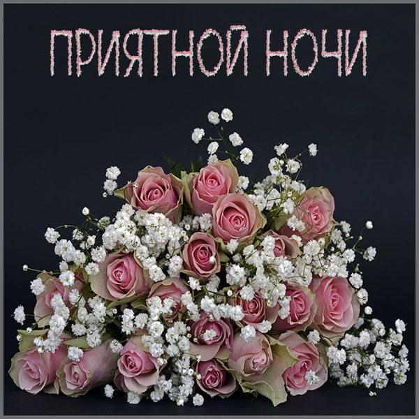 Виртуальная картинка приятной ночи - скачать бесплатно на otkrytkivsem.ru