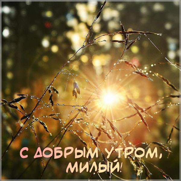 Виртуальная картинка с добрым утром милый - скачать бесплатно на otkrytkivsem.ru
