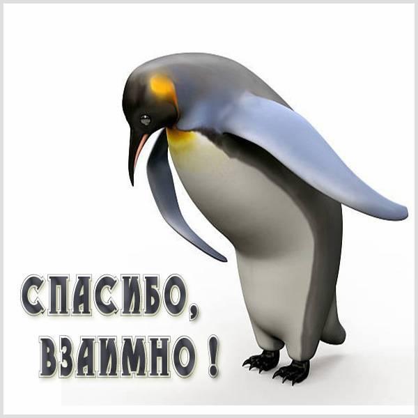 Виртуальная картинка спасибо взаимно - скачать бесплатно на otkrytkivsem.ru
