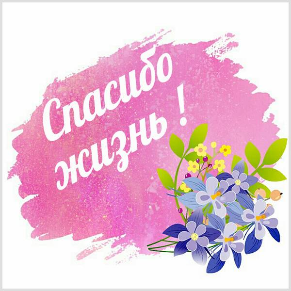 Виртуальная картинка спасибо жизнь - скачать бесплатно на otkrytkivsem.ru