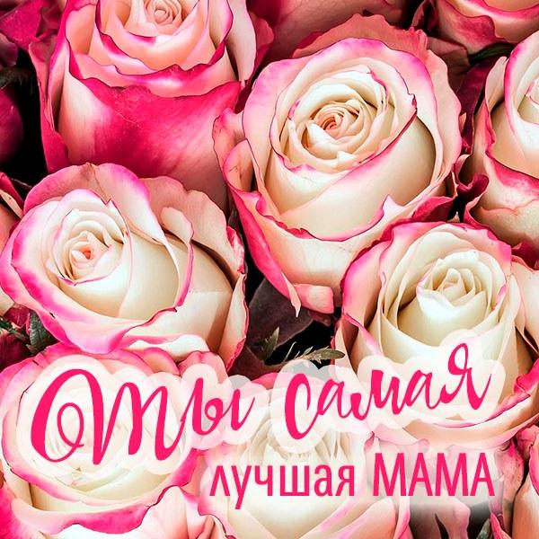 Виртуальная картинка ты самая лучшая мама - скачать бесплатно на otkrytkivsem.ru