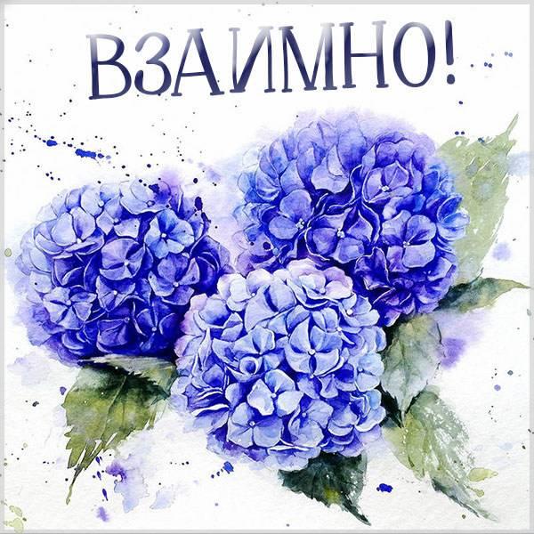 Виртуальная картинка взаимно - скачать бесплатно на otkrytkivsem.ru