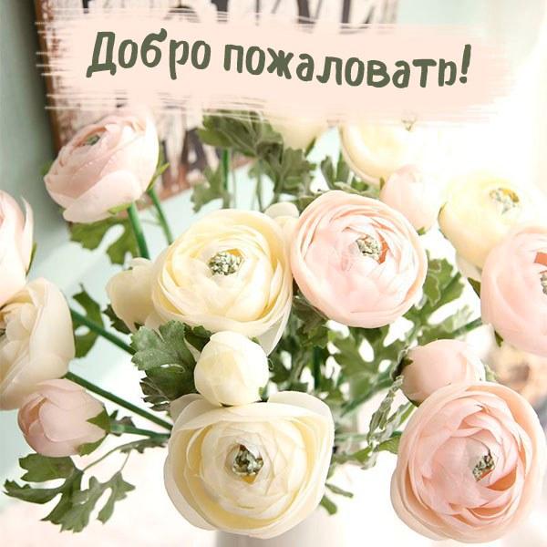 Виртуальная открытка добро пожаловать - скачать бесплатно на otkrytkivsem.ru