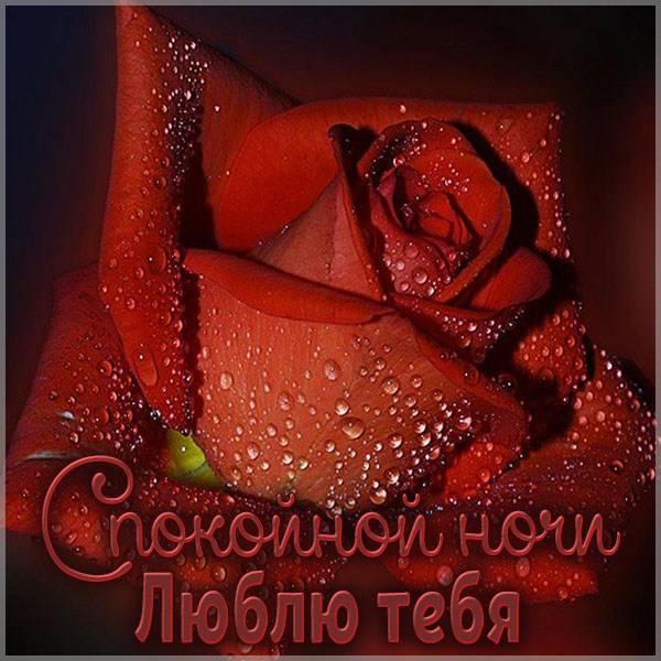 Виртуальная открытка люблю тебя спокойной ночи - скачать бесплатно на otkrytkivsem.ru