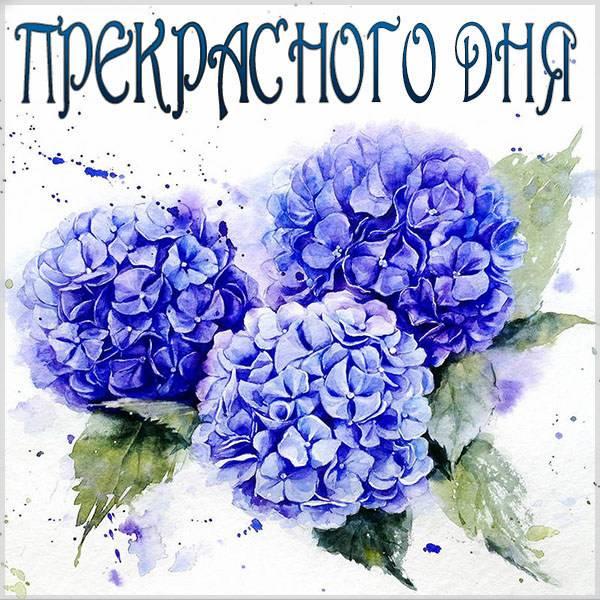 Виртуальная открытка прекрасного дня - скачать бесплатно на otkrytkivsem.ru