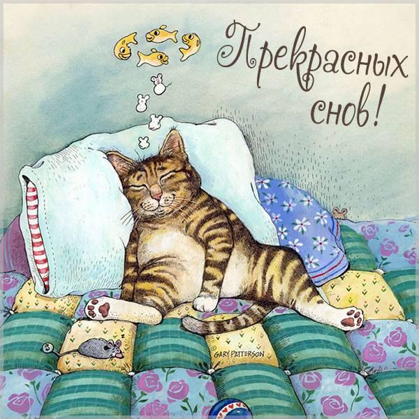 Виртуальная открытка прекрасных снов - скачать бесплатно на otkrytkivsem.ru