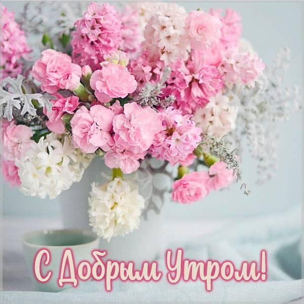 Виртуальная открытка с добрым утром девушке - скачать бесплатно на otkrytkivsem.ru