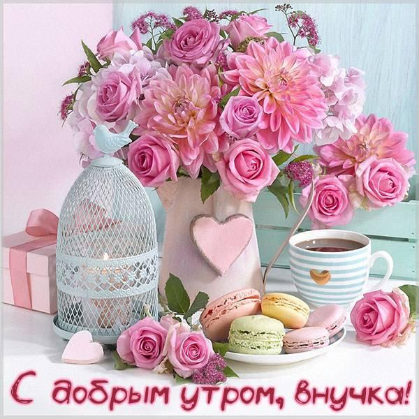 Виртуальная открытка с добрым утром внучке - скачать бесплатно на otkrytkivsem.ru