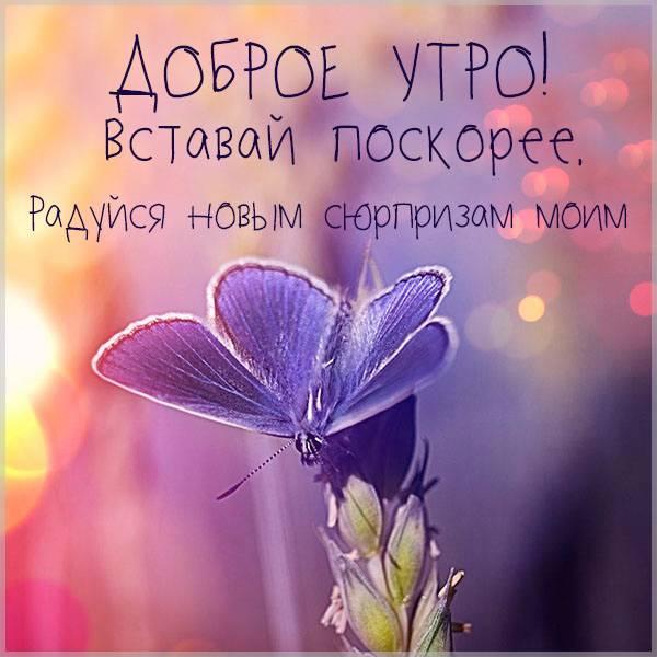 Виртуальная открытка с добрым весенним утром - скачать бесплатно на otkrytkivsem.ru