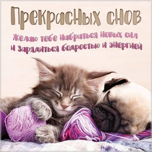 Виртуальная открытка с пожеланием прекрасных снов - скачать бесплатно на otkrytkivsem.ru
