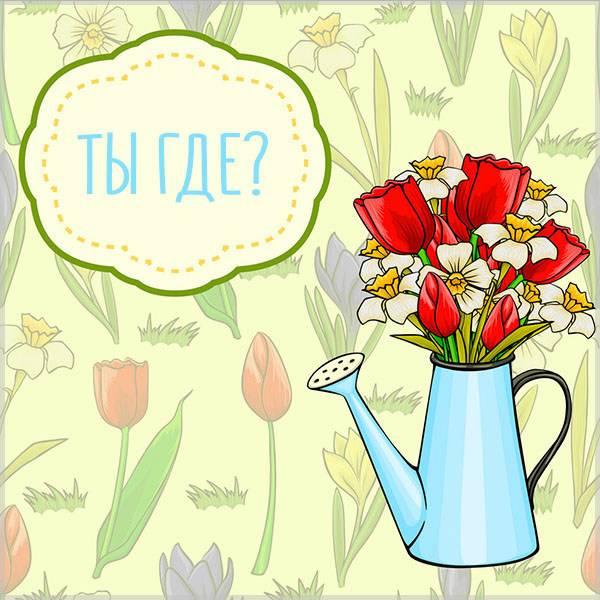 Виртуальная открытка ты где - скачать бесплатно на otkrytkivsem.ru