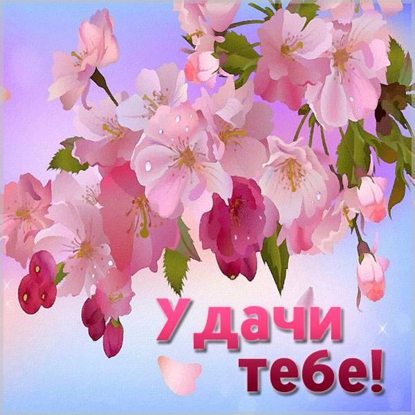 Виртуальная открытка удачи тебе - скачать бесплатно на otkrytkivsem.ru