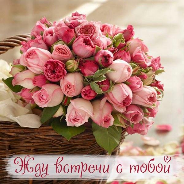 Виртуальная открытка жду встречи с тобой - скачать бесплатно на otkrytkivsem.ru