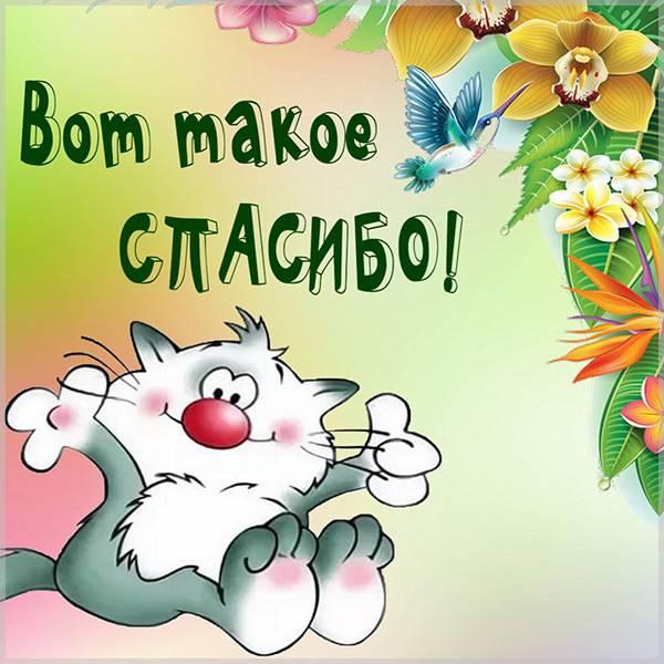 Виртуальная прикольная картинка спасибо - скачать бесплатно на otkrytkivsem.ru