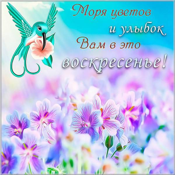 Воскресная открытка в картинке - скачать бесплатно на otkrytkivsem.ru
