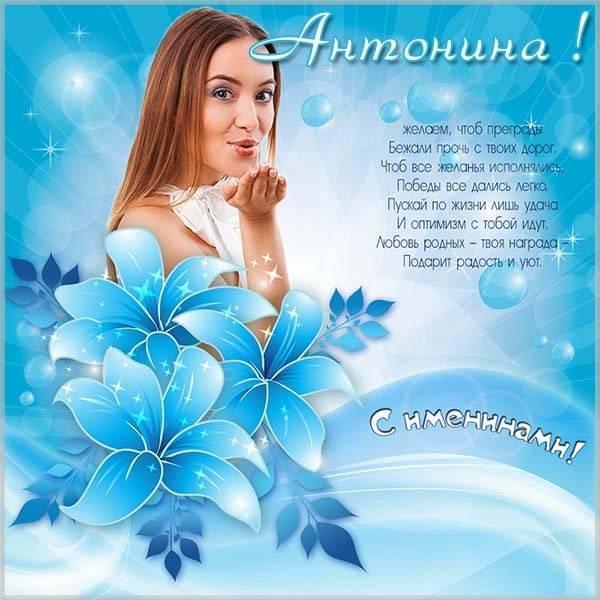 Замечательная картинка на именины Антонины - скачать бесплатно на otkrytkivsem.ru