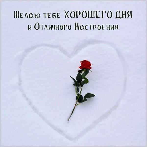Зимняя картинка хорошего дня и отличного настроения - скачать бесплатно на otkrytkivsem.ru