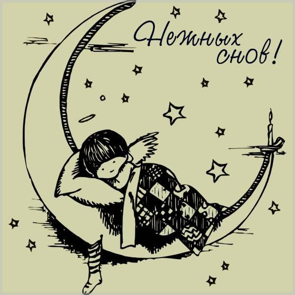 Зимняя картинка нежных снов - скачать бесплатно на otkrytkivsem.ru