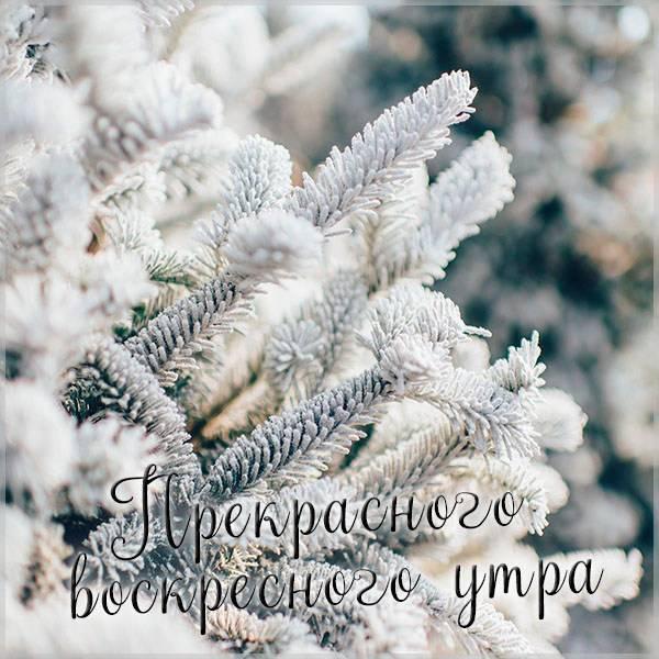 Зимняя картинка прекрасного воскресного утра - скачать бесплатно на otkrytkivsem.ru