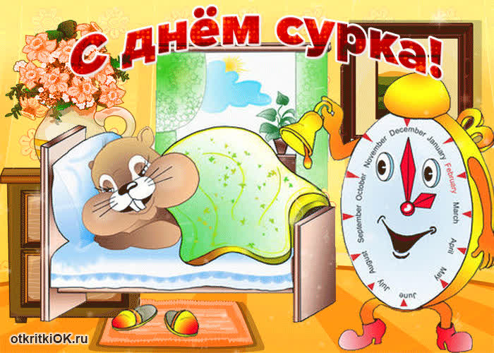 Хочу тебя поздравить в день сурка - скачать бесплатно на otkrytkivsem.ru