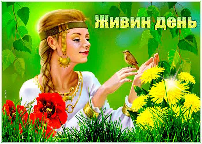 Картинка гиф Живин день - скачать бесплатно на otkrytkivsem.ru