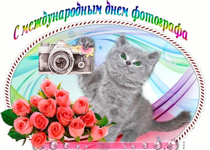 Мы празднуем день фотографа сегодня - скачать бесплатно на otkrytkivsem.ru