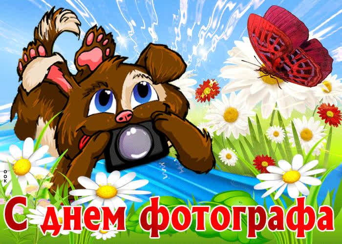 Поздравляю с днем фотографа - скачать бесплатно на otkrytkivsem.ru