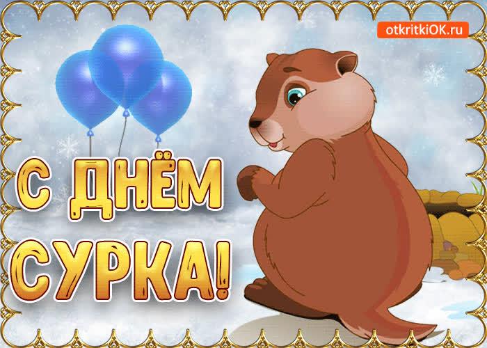 Поздравляю с днём сурка - скачать бесплатно на otkrytkivsem.ru