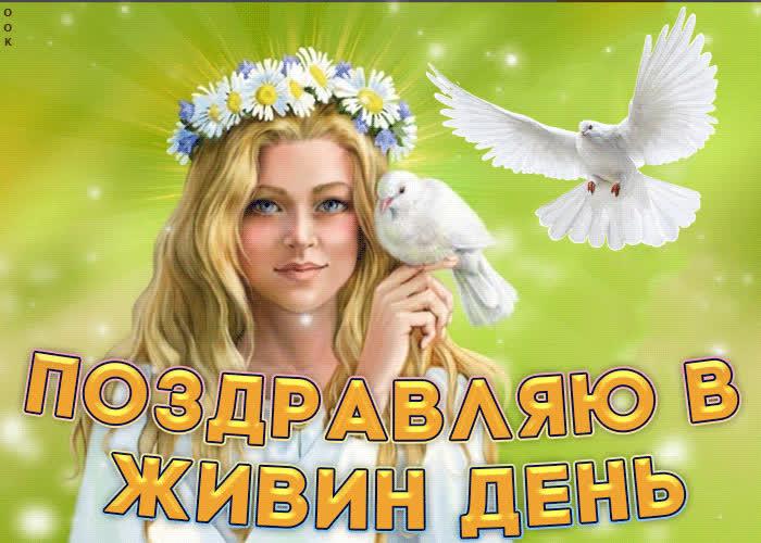 Поздравляю в Живин день - скачать бесплатно на otkrytkivsem.ru