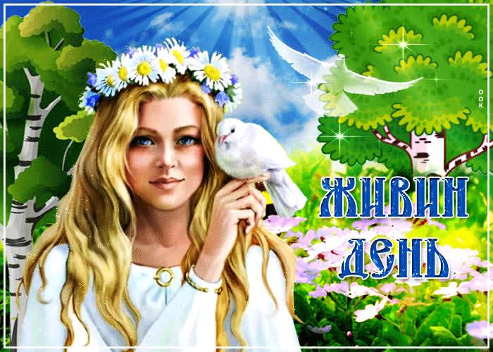 Прикольная картинка Живин день - скачать бесплатно на otkrytkivsem.ru