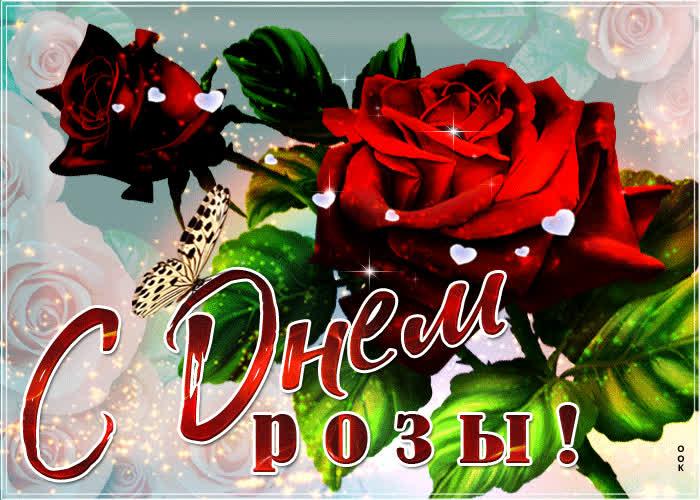 С днем розы - скачать бесплатно на otkrytkivsem.ru