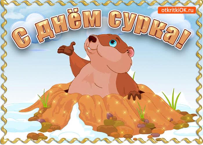С днём сурка - скачать бесплатно на otkrytkivsem.ru