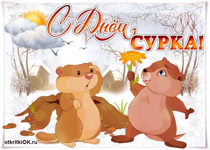 В день сурка - скачать бесплатно на otkrytkivsem.ru